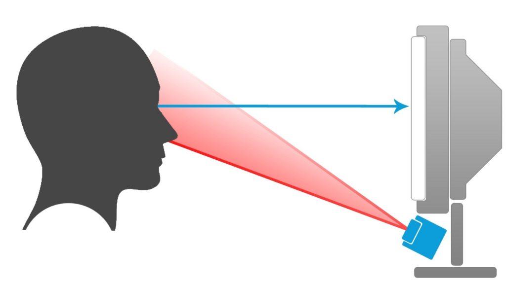 eye-tracking, cognitive neuroscience